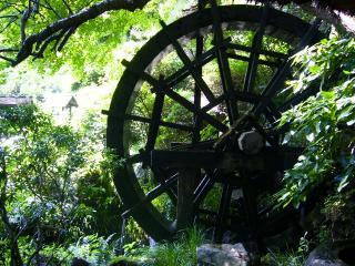 黒茶屋 庭7