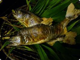 黒茶屋 焼物 山女魚