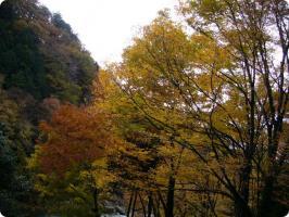 黒茶屋 風景4