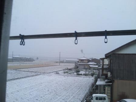 雪・・・なんですけど。