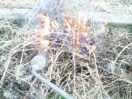 火炎放射機