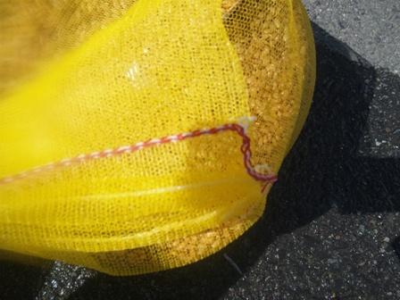 赤い糸 白い糸