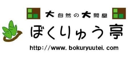 bokustyle2.jpg