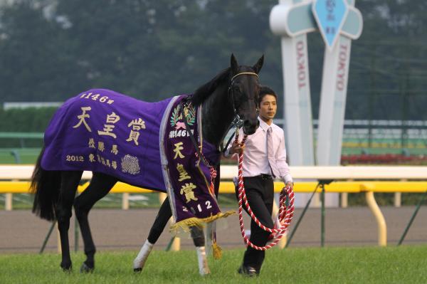 エイシンフラッシュ天皇賞5