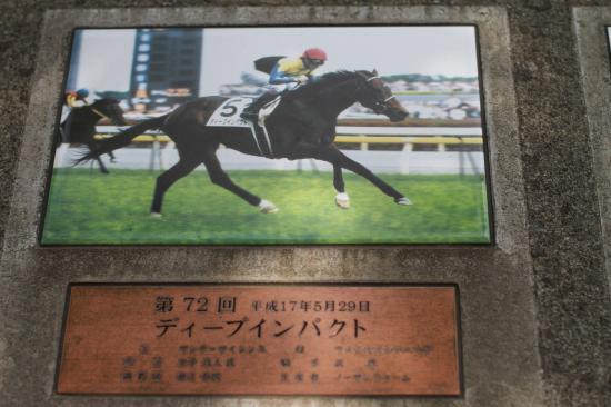 東京競馬場ディープ1