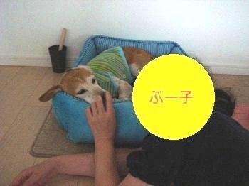 10_07_31_03.jpg
