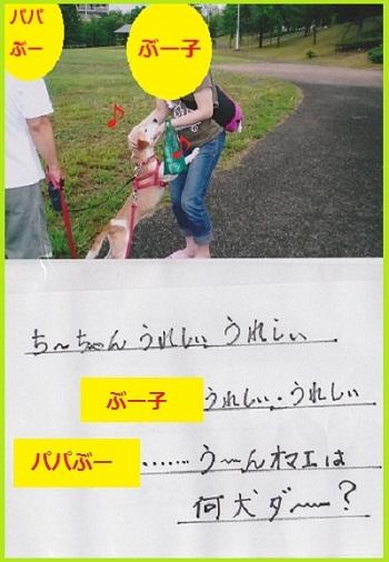 10_08_13_03.jpg