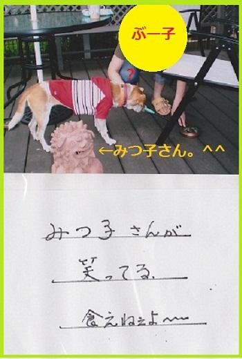 10_08_13_04.jpg