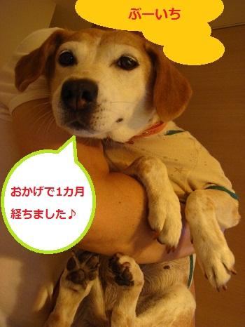 10_08_27_01.jpg