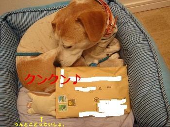 10_08_27_03_.jpg