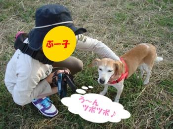 10_10_16_2_04.jpg