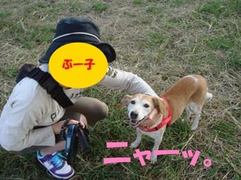 10_10_16_2_05.jpg