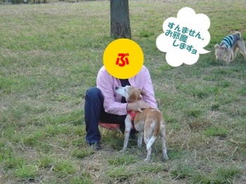 10_10_16_2_07_.jpg