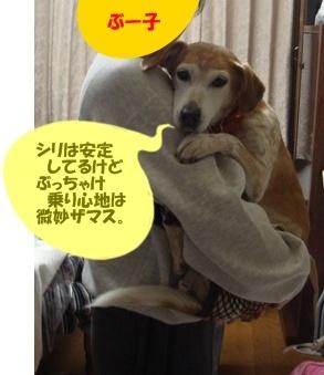 11_05_04_02.jpg
