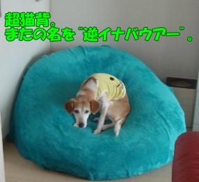 11_06_18_01.jpg