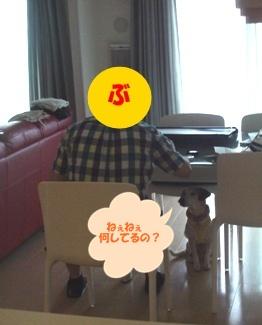 11_06_18_04.jpg