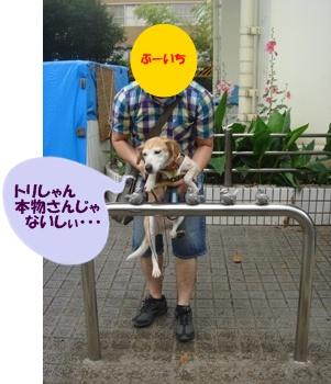 11_06_18_b02.jpg