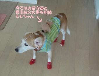 11_09_12_03.jpg