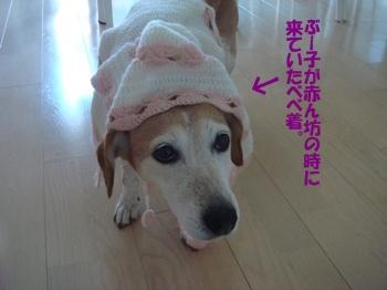 11_09_12_04.jpg