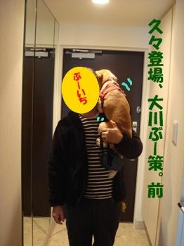 11_11_03_03.jpg