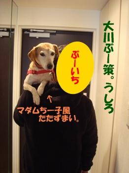 11_11_03_04.jpg