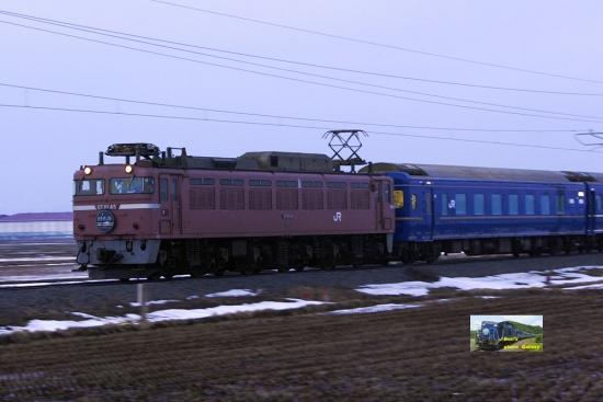 nk412007.jpg