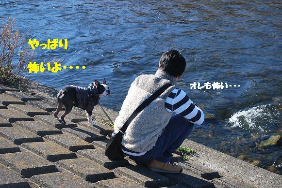 20131226DSC_0418.jpg
