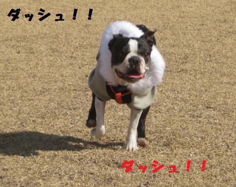 kenngaku4.jpg