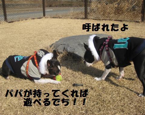kenngaku6.jpg