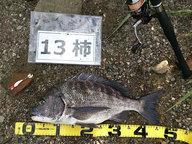 0825Daisuke@Wakayama-1.jpg
