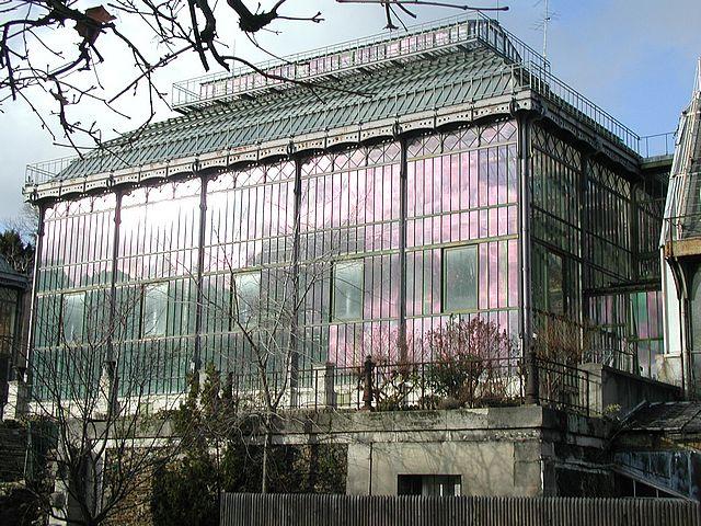 ガラスの家