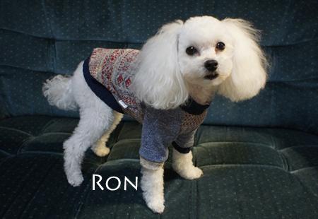ron2_1.jpg