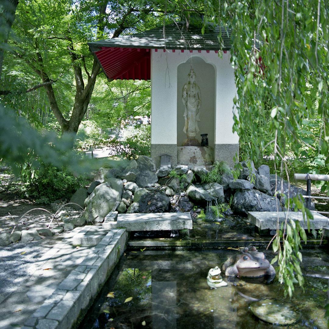 Tenryu-ji-SaganoAdj.jpg