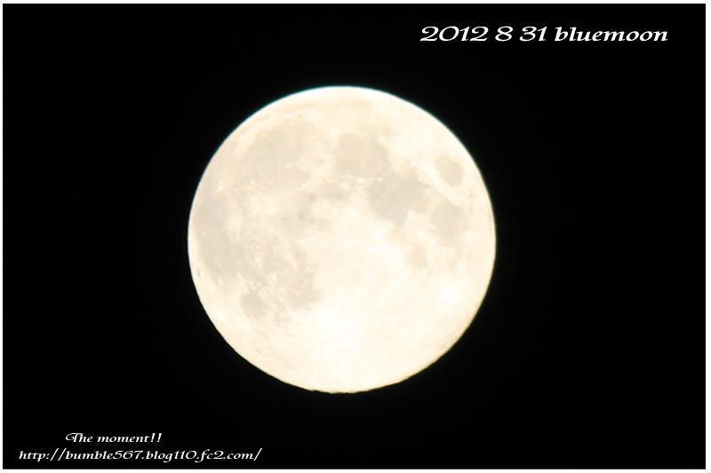ブル―moon1