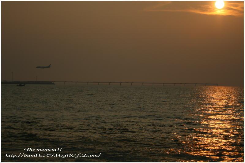 evening1.jpg