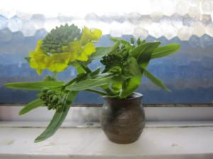 1.菜の花