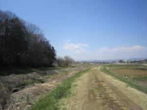 1.春の土手