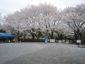 1.智光山公園③