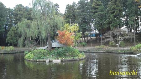 上尾丸山公園①