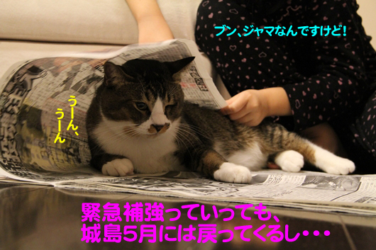 IMG_0293_Rのコピー