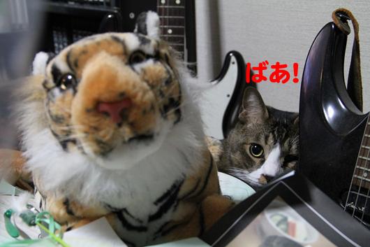 IMG_0258_Rばぁのコピー