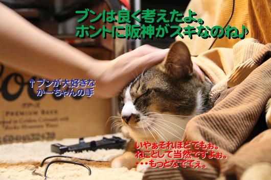 9IMG_0329_Rのコピー