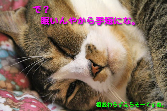 IMG_0481_R眠いんやから手短にな。