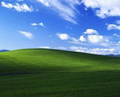 windowsnoare.jpg