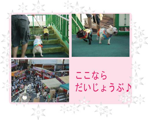 1_20110914103138.jpg