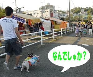 b_20110914111446.jpg