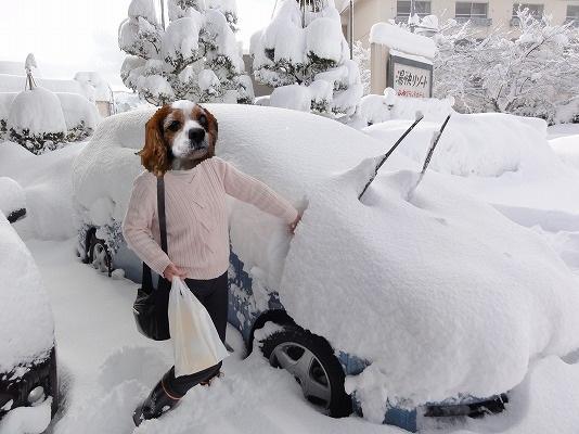 一晩で車が雪山