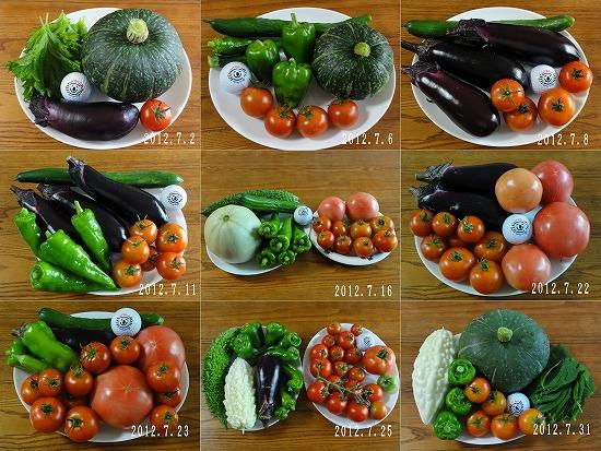 2012年7月夏野菜抜粋
