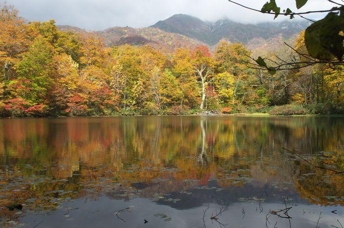 13-11-1-1苅込池・大野町(福井)