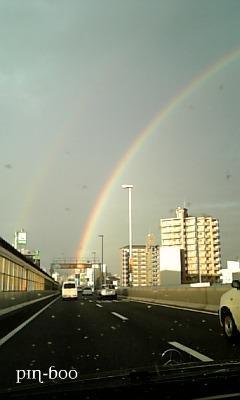 8.31虹